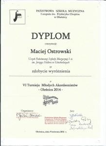 Ostrowski Olesnica 2014